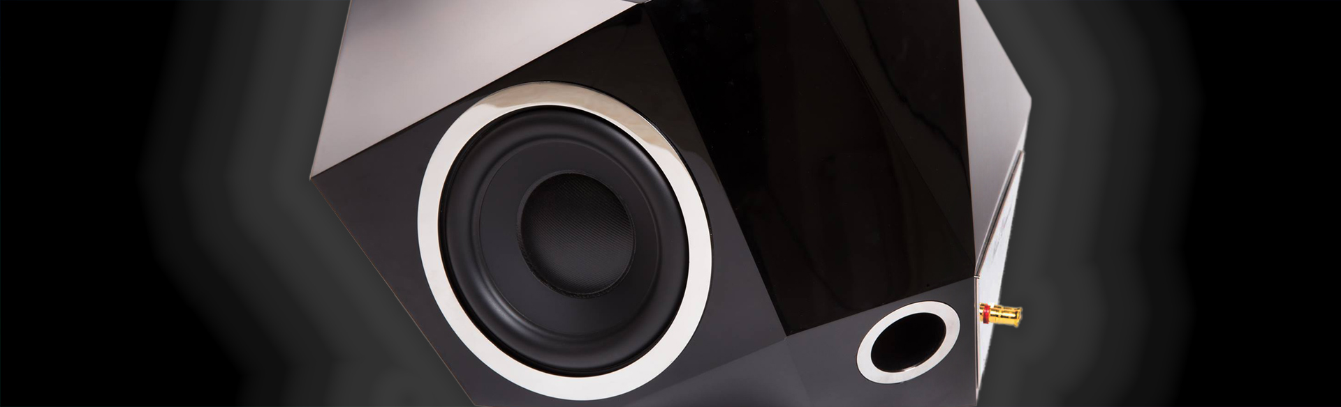 Black Diamond subwoofer